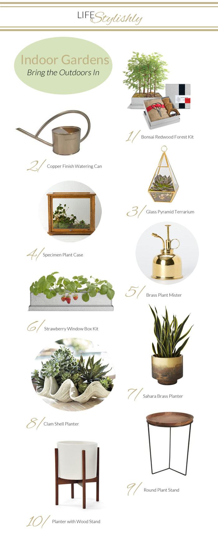 Cure for Spring Fever: Indoor Container Garden